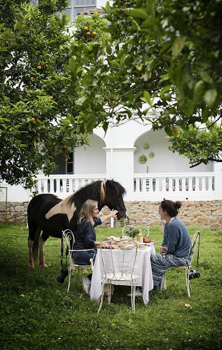 federica and co hotel cantabria comida jardín