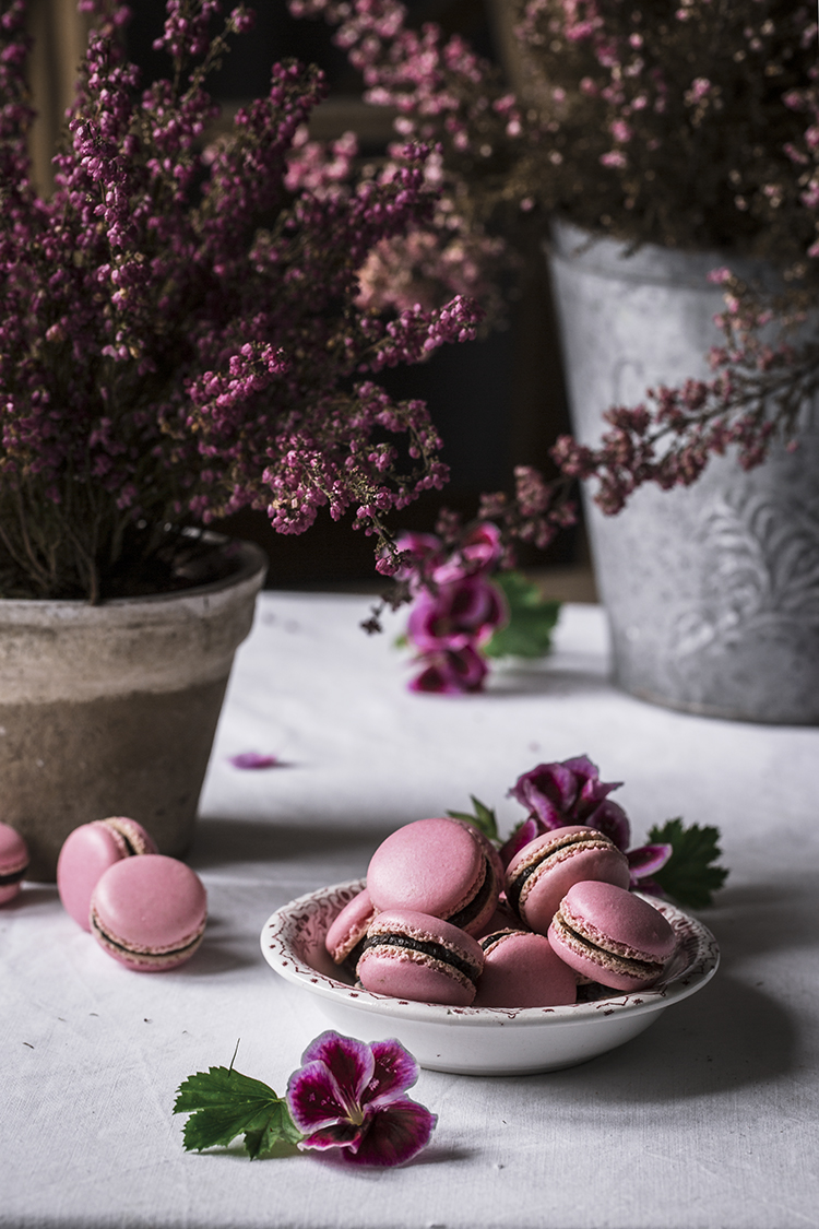 macarons perfectos con merengue italiano 1