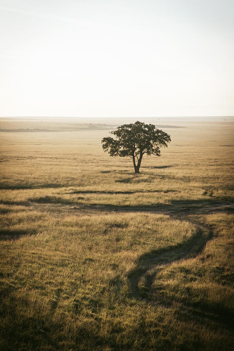 Masai Mara Kenia Atardecer en Globo